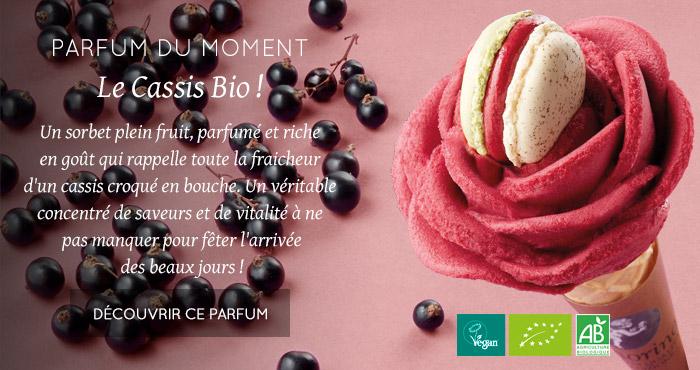 PARFUM DU MOMENT : Le Cassis Bio !